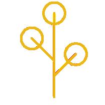 Leaf Logo 2